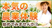 【保存】本気の農業体験始めてみませんか?