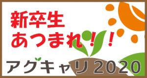 【保存】アグキャリ2020
