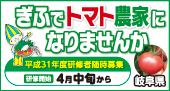 中日アド企画 岐阜バナー