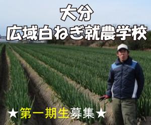 大分広域白ねぎ就農学校【第一期研修生募集】