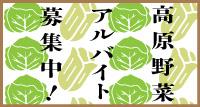 高原野菜特集