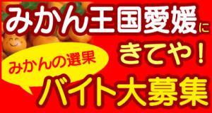 真穴柑橘共同選果場