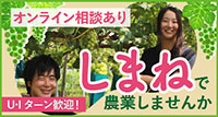しまねで農業しませんか?☆オンライン相談あり☆☆U・Iターン歓迎!☆