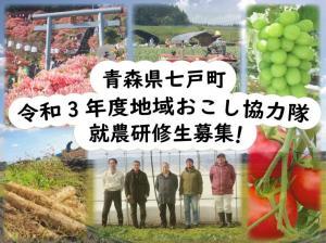 青森県七戸町 就農研修生募集