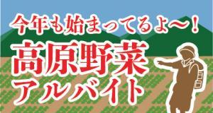 今年も始まってるよ!高原野菜特集