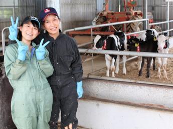 より良い牧場づくりをするために一緒に頑張ってみませんか?★未経験者大歓迎★農業盛んな千葉で酪農をやろう!