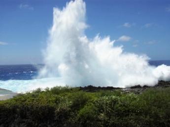 絶海の孤島、大自然に囲まれた南大東島のさとうきび畑がオフィスです!まずは6ヶ月間、島での生活を始めませんか?