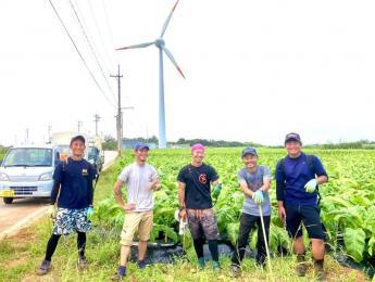 沖縄好き!自然好き!にはたまらない環境で農業しませんか?7月までのお仕事です★【寮費無料(Wi-Fi完備)】