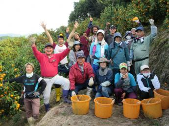 宇和島から世界に通じる農業を。農業で宇和島を盛り上げよう!新卒生も歓迎します♪