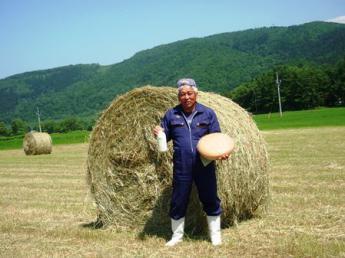 """20年以上にわたる循環酪農により生み出される最良の牛乳で〝世界に誇れる""""オンリーワンのチーズづくりを目指している牧場です。 同じ想いを持って働いていただける方を求めています。 ★酪農スタッフ、チーズ職人、乳製品の加工スタッフ同時募集★ 短期(3か月~)勤務可"""