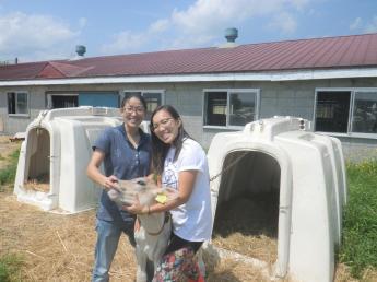「北海道オホーツク100%」の大自然と温かい農家の人々がみなさんをお待ちしています!短期間で酪農のお仕事体験しませんか?【宿泊施設完備・実習手当あり・2ヶ月間~OK】