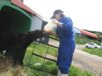 酪農のコトを1から学べる環境です♪ 町とJA、酪農家がつくった組織だから安心! 北の大自然の中で、チャレンジしてみませんか? \寮費・光熱費無料!住み込み食事付き/