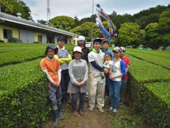 """☆未経験者歓迎☆ 若いパワーが溢れる元気な茶園で、""""笑顔""""と""""幸せ""""を運ぶお茶を作りませんか?"""