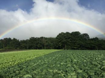 ☆10月末頃までの期間限定農業アルバイトです☆北軽井沢の大空と大地の中で、がむしゃらに頑張ってみませんか?お友達同士・カップルでの応募も歓迎します♪