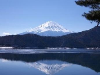"""世界に誇る""""富士山""""の麓で牧場長目指して頑張ってみませんか? ☆牧場の後継者候補募集!"""