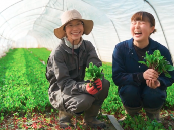 未経験でも着実にステップアップできる仕組みが! 若手が活躍し年々成長する冨田農園で、将来のリーダーを目指して頑張ってみませんか?