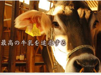 """""""酪農を一生の仕事にしたい""""という夢を叶えることが出来る牧場です!★3種の牛がお出迎え★\酪農スタッフ・チーズ製造スタッフ同時募集/"""