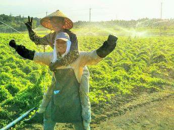 全国有数の大和芋の産地で大和芋の収穫、出荷の仕事のお手伝いをお願いします! ◎通勤できる方大歓迎◎