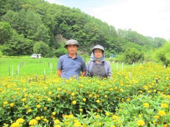 花は好きですか?色とりどりの花に囲まれた10月上旬まで短期アルバイト*きれいな個室寮・3食付*