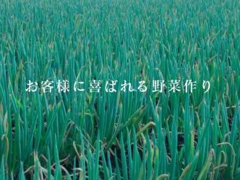 \未経験者歓迎!/『お客様に喜ばれる野菜作り』 きゅうりの栽培を中心に規模拡大し、グローバルGAP認証を取得! ◎2020年にはいちごの観光農園も開始いたしました!