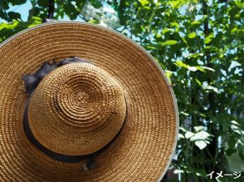 【未経験者大歓迎】野辺山高原で農業の楽しさと気持ち良さを感じながら働いてみませんか?《個室寮あり・食事支給》