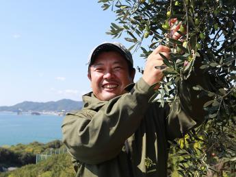 \待遇改善/★1ヶ月~OK!・免許なしOK★日本を代表するオリーブアイランド「小豆島」で収穫アルバイトをしませんか?【オーシャンビューの寮有】