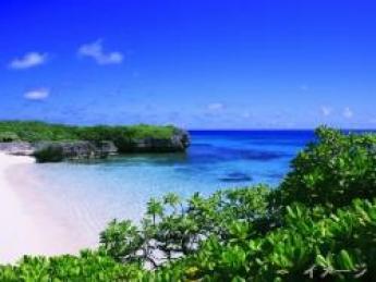 """☆期間限定☆南国!沖縄!宮古島!美しい自然に囲まれながら、""""葉たばこ"""