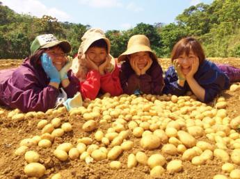 あったかい南の島でいい汗かこう♪ 体を使って元気に農業をしませんか?◆寮完備◆