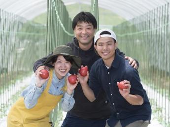 《研修生募集!》九重町でトマトを作ろう!【移住支援あり】
