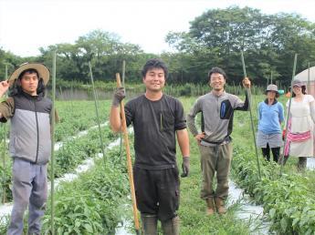 「大好きな人にも食べてもらえる野菜づくりができる」 「良いものを世の中に広めていきたい」 創業から5年、順調に売上拡大中。 有機JAS農場の拡大に向けて私たちと一緒に農業にチャレンジしませんか?
