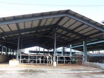 牛は好き!でも臭いは気になる!そんな方にオススメの牧場です。独自の消臭技術で臭いを大幅に軽減しています♪
