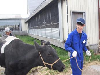 大自然と乳牛に接しながら、北海道の東の端で春夏秋冬を感じてみませんか?◎未経験者歓迎◎休日多め◎長く働ける環境◎