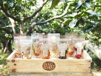 年末迄の期間限定アルバイター募集!!  古都奈良吉野は桜とフルーツの里! この上ないロケーションで収穫バイトをしませんか?【綺麗な寮あり】