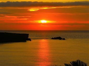 青い海と空、白い砂浜、色とりどりの花!美しい南の島で一緒に農業をやりませんか?