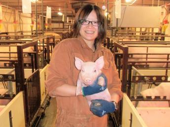 安定して、長く働ける会社です!最新鋭の設備が整っている環境の中、 日本の「食」と「豚」の未来を一緒に作っていきませんか? \未経験者歓迎/