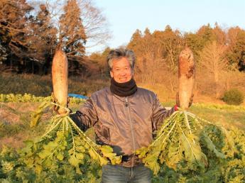 田舎を元気にしたい!! その想いを胸に東京から移住したオーナーと一緒に野菜を作って生活しませんか?【正社員・パート・アルバイト募集】