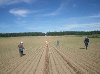 四季を肌で感じるオホーツクの大地で農業のおしごとしませんか?新規事業に携われる!◆社会保険完備◇家賃半額補助◆