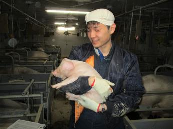 未来の養豚業を担う人材を募集いたします!手当充実で誰でも安心して働けます