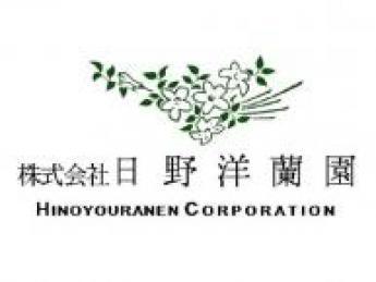 お客様の一生に一度の節目のシーンを彩る、胡蝶蘭とブライダルグリーンの生産業務!「企業経営」で日本の農業をもっと面白くしませんか?