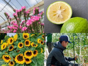 """花、野菜、果樹の生産から加工、販売まで。あなたの""""得意""""を活かせる会社です。美しい花に囲まれてあなたらしく働きませんか?【正社員、長期・短期(1ヶ月~)アルバイト、研修生】"""