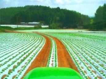 【繁忙期は日給1万円以上!】期間中の離職率0%!!毎年リピーターさんも訪れる楽しい農園です!今年33才の若手代表のもと、短期で農業やってみませんか?【寮あり・3食支給】