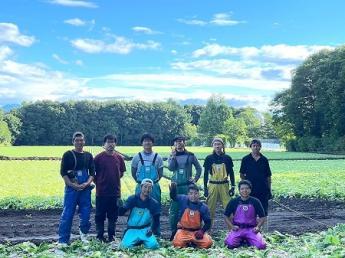 美しい自然に囲まれた北軽沢で高原野菜作を作りませんか? 未経験の方、応援します!【Wi-Fi環境あり・寮費無料・3食付】\限定2名募集/