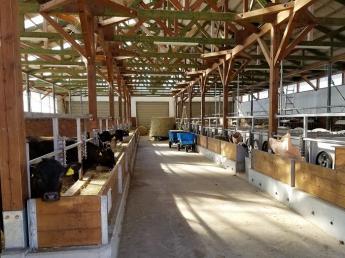 日本各地へ優秀な牛を広げたい!優秀なエリート牛の飼育管理スタッフの募集です♪ \経験不問/