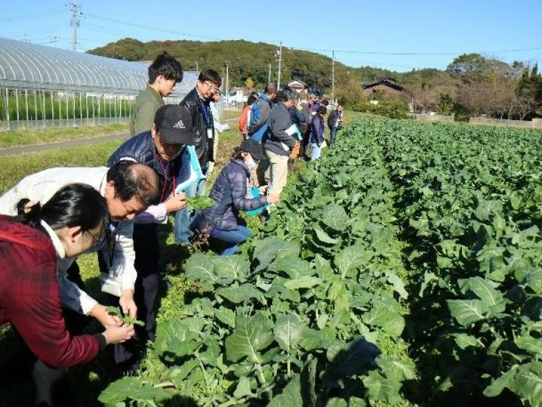 2泊3日の「就農ゆめツアー」開催! 「農業をしたい」その夢に向かって一歩踏み出してみませんか? ☆交通費助成あり