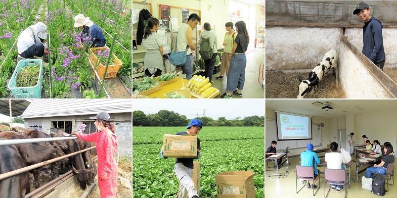 ★参加費無料★北海道むかわ町で1週間本気の農業体験してみませんか?◇定員15名◇