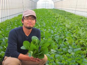 【都市近郊型農業×新規就農×有機栽培】前向きに農業に取り組んでいます! \一緒に成長してくださる方募集/