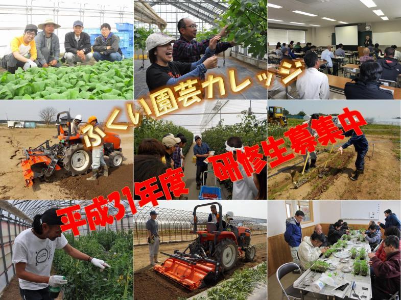 全国47都道府県幸福度ランキングNO.1★ふくい県で農業、はじめませんか?