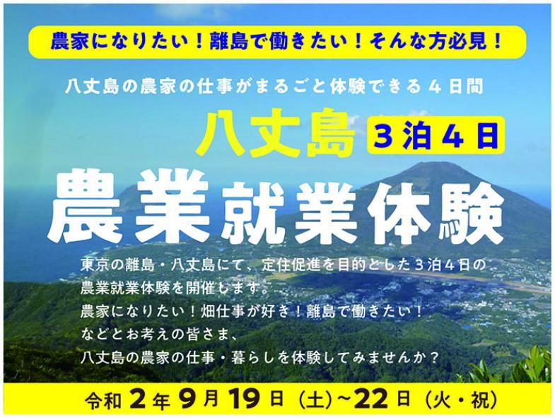 東京の離島・八丈島で3泊4日の農業体験♪