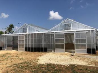 宮古島でトマトとマンゴー作りませんか? 精密鋳造製造業を生業とする会社が運営する宮古島の農園です♪ イチから農園を育てていく喜びを共に分かち合いましょう!! \未経験者歓迎/