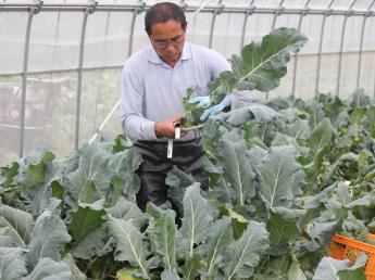 あなたのアイデアで地域貢献!?農業だけにとどまらず地域が元気になる事業を展開していきます♪\未経験者歓迎/\週休2日/